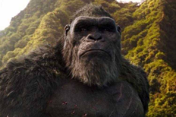 'Godzilla Vs Kong' Dünya Çapında 358 Milyon Dolara Yükseldi